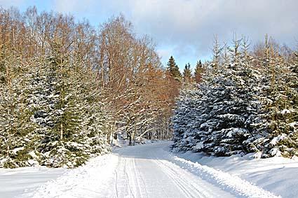 vintervag2010